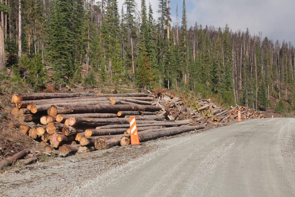These trees are closer to finding a home other than a burn pile. Along a Wyoming road in 2010.