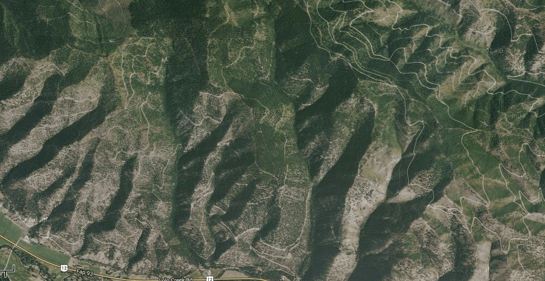 To date, the vast majority of the land burned in the Lolo Creek Complex fire has been heavily logged, roaded and weeded sections owned and managed by Plum Creek Timber Company