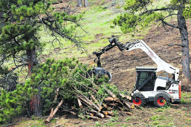 EVERGREEN, CO - MAY 7: A worker moves recently cut trees into a pile at Birch Hill Park on May 7, 2014, in Evergreen, Colorado. A crew made up of Denver Mountain Parks employees and volunteers, with the help of Jefferson County workers, have been clearing out the dense parts of the area to improve forest health and help mitigate potential fire hazards. (Photo by Anya Semenoff/The Denver Post)