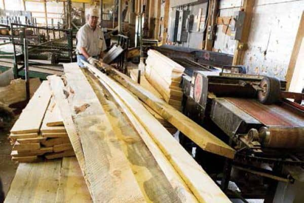 Beetle-kill, or blue-stained, pine can be milled into dimension lumber. (Colorado State Forest Service)