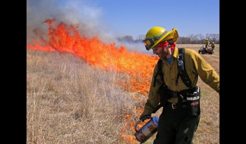 A fire team lights a restoration burn on the Dahms Tract, Platte River and Wood River area of Nebraska. The Nature Conservancy hopes to demonstrate that there is economic as well as conservation value in restoring tracts of native grasslands. Photo by Chris Helzer/The Nature Conservancy