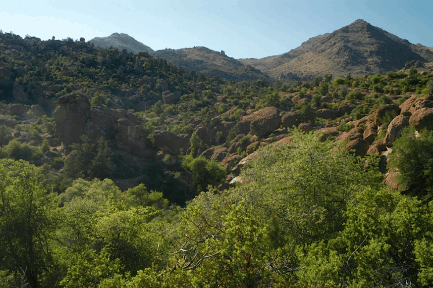 Part of the 449 page Public Lands Rider Package on the $585 Billion Defense Bill includes the SE Arizona Land Exchange, which will give 2,400 acres of the Tonto Nation Forest – ancestral homeland of the Apache Tribe – to a foreign mining company and allow them to put in a huge copper mine on these sacred lands (pictured above).